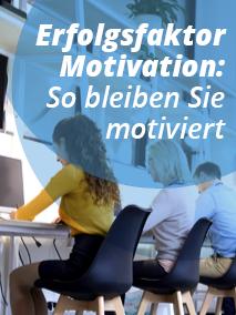 Grafik Motivation als Makler